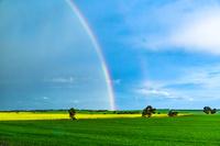 オーストラリア 虹