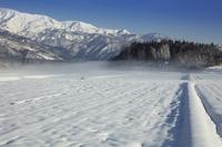 田園の雪と流れる霧とアルプス