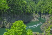 奈良県 初夏の瀞峡と遊覧船