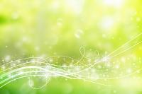 新緑と流れる光