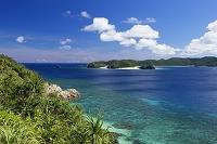 沖縄県 アダンと嘉比島と座間味島 阿嘉島