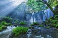 熊本県 鍋ヶ滝の光