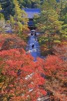 京都府 紅葉の南禅寺