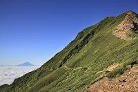 長野県と山梨県の県境 赤岳越しに望む富士山と雲海