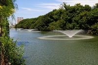 兵庫県・明石市 明石公園