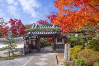 京都 大原野 正法寺