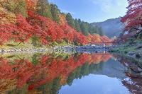 愛知県 香嵐渓