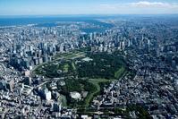 北の丸公園周辺より大手町 丸の内 霞が関 東京湾