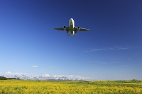 北海道 カラシナと十勝岳連峰と飛行機