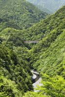 静岡県 接岨峡と南アルプスあぷとライン