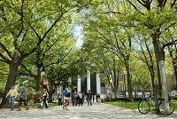 イギリス マサチューセッツ工科大学
