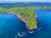 北海道 原生花園 あやめが原半島 ヒオウギアヤメ 国の天然記念物