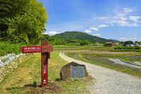 奈良県 桜井市 山の辺の道 額田王歌碑