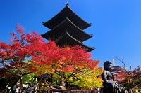 愛知県 名古屋市 紅葉の興正寺