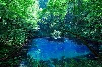 青森県 夏の深浦町 青池