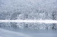 長野県 北竜湖