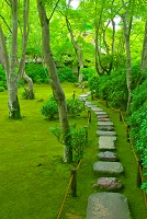 京都府 新緑の嵐山 大河内山荘(大河内傳次郎別邸)