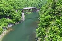 福島県 新緑の会津鉄道と鵜沼川