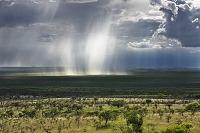 ケニア カジアド郡