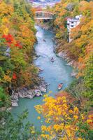 長野県 紅葉の天竜峡 天竜ライン下り