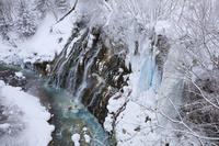 北海道 雪の白ひげの滝