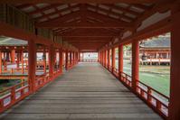 広島県 回廊 厳島神社