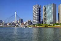 東京都 中央大橋と隅田川の遊覧船