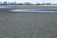 大潮 干潮の波紋