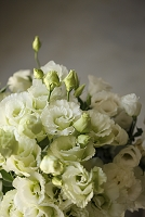トルコキキョウとバラとの白い花束
