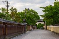早朝の京都・建仁寺門前