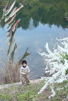 鯉のぼりと日本人の男の子