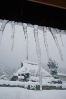 京都府 雪日の茅葺の里
