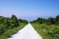 北海道 白い道