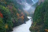 徳島県 雨の祖谷渓