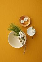 梅の花と和食器