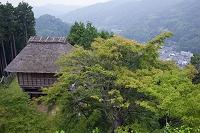 愛知県 足助城 西物見台