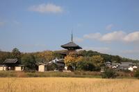 奈良県 斑鳩の里 法起寺 三重塔