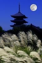 中秋の名月 ススキと仏塔