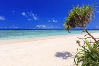 沖縄県 エメラルドグリーンの海と空 ペー浜 波照間島