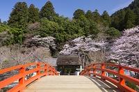 奈良県 室生寺
