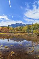 長野県 松本市 一の瀬園地のどじょう池