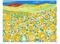 スペイン ヒマワリ畑(リトグラフ)