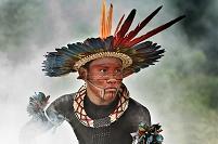 ブラジル アマゾナス トカンチンス部族