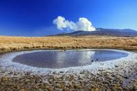 熊本県 氷模様とススキ原と阿蘇山噴煙 古坊中
