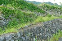 奈良県 川上村 白屋地区 集団移転後に残った石垣