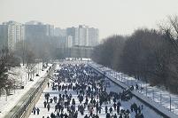 カナダ オタワ 凍えたリドー運河にスケートする人たち