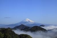 静岡県 伊豆の国市 葛城山 富士山と雲海