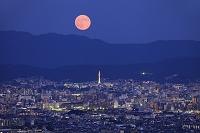 京都府 スーパームーンと京都タワー周辺のイルミネーション