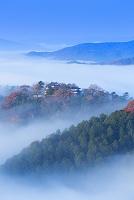 岡山県 秋の備中松山城の雲海