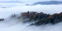 岡山県 雲海の備中松山城